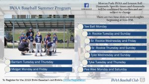 BVAA Baseball Club summer program schedule draft